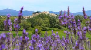 1er Rallye d'automne en Provence @ Bollène | Provence-Alpes-Côte d'Azur | France